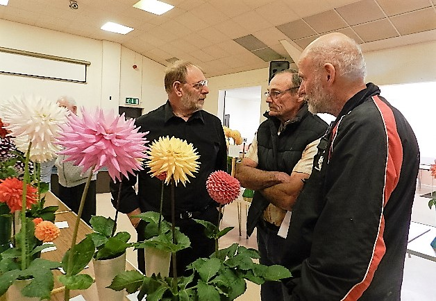 Mike Chattertton and Ron Wood discussing their dahlias with dahlia judge Phil Oram.